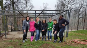 Students from the University of North Texas were among those who volunteered during the spring break here at Turpentine Creek!